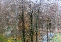 Golpe de la lluvia del otoño contra el vidrio Fotos de archivo libres de regalías