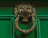 Golpeador de cobre amarillo en la forma de la cabeza del león Fotos de archivo