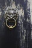 Golpeador de puerta del león Foto de archivo libre de regalías