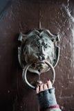 Golpeador de puerta del león Imagen de archivo libre de regalías