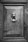 Golpeador de puerta del león Imágenes de archivo libres de regalías