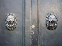 Golpeadores principales del león en una puerta de madera vieja Fotos de archivo libres de regalías