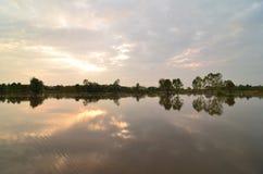 Golpes del sol de la mañana del comienzo del verano Fotos de archivo libres de regalías
