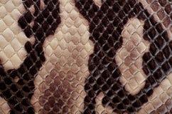 Golpeteo de la piel de serpiente foto de archivo
