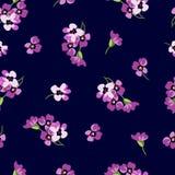 Golpeteo floral inconsútil con las pequeñas flores rosadas Fotos de archivo
