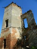 Golshany castle in the Republic of Belarus. Stock Photography