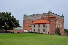 Golub-Dobrzyn,波兰城堡  库存图片