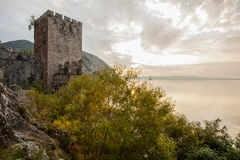 Golubac fortress Royalty Free Stock Images