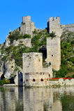 Golubac fortress Stock Image
