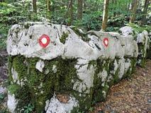 Golubinjak, Gorski kotar, detalles de la naturaleza, Croacia, 6 Fotografía de archivo libre de regalías