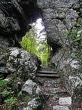 Golubinjak, Gorski kotar, natura szczegóły, Chorwacja, 3 Obrazy Stock