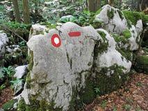Golubinjak, Gorski kotar, natura szczegóły, Chorwacja, 7 Obrazy Stock