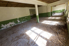 Golv av en övergiven skola Royaltyfri Bild