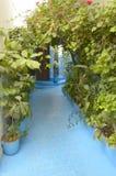 Golv som målas i blue Royaltyfri Foto