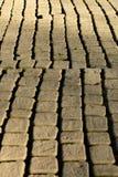 golv textur, sol, tegelsten, bakgrund, buse, ljus, trottoar, arkitektur, yttersida, trottoar, abstrakt, konkret som är förberedan arkivfoto