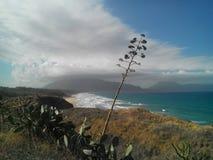 Golven in de Golf van Castellammare en in de voorgrond typische Siciliaanse installaties stock afbeeldingen