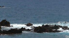 Golven die op lavarotsen verpletteren Langzame Motie stock videobeelden