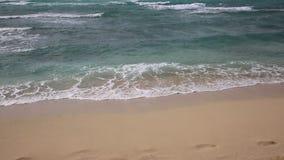 Golven en strand stock video