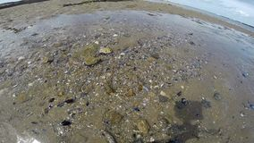 Golven met zand stock footage