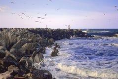 Golven op de Golfbreker Stock Afbeeldingen