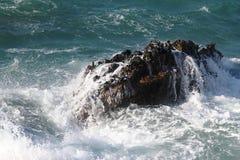 Golven op de rotsen Royalty-vrije Stock Foto