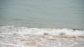 Golven op een zandig strand stock video