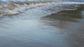 Golven op het strand stock footage