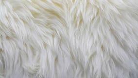 Golven van zuivere witte wol Royalty-vrije Stock Afbeeldingen