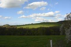 Golvend Landschap met Bomen en Weiden, Tsjechische Republiek, Europa Stock Foto