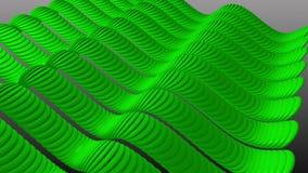 Golvende Groene Strepensinus stock videobeelden
