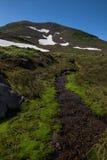 Golvende kreek op de hellingen van Mutnovsky-vulkaan Royalty-vrije Stock Foto's