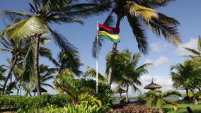 Golvende vlag van Mauritius stock video