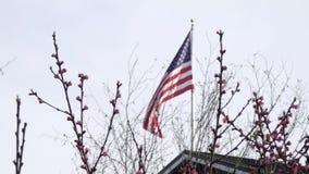 Golvende vlag in wind over de lentebloei stock videobeelden
