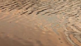 Golvende waterspiegel stock videobeelden