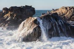 Golvenneerstorting tegen Rocky Coastline in Noordelijk Californië royalty-vrije stock fotografie