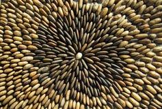 golvflodrock Royaltyfri Fotografi