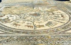 Golvmosaiken i det Orpfeus huset i romare fördärvar, den forntida romerska staden av Volubilis morocco Arkivfoton