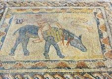 Golvmosaiken i hus av idrottsman nen i romare fördärvar, den forntida romerska staden av Volubilis morocco Royaltyfria Foton
