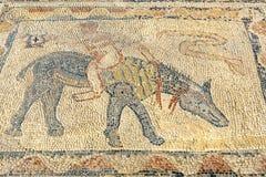 Golvmosaiken i hus av idrottsman nen i romare fördärvar, den forntida romerska staden av Volubilis morocco Fotografering för Bildbyråer