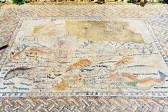 Golvmosaiken i hus i romare fördärvar, den forntida romerska staden av Volubilis morocco Arkivfoton