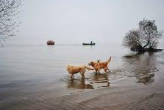 Golyazi sjö Royaltyfri Fotografi