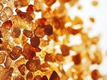 Goma-arábica da goma Imagem de Stock Royalty Free