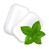 Goma de mastigação e folhas de hortelã fresca Imagem de Stock