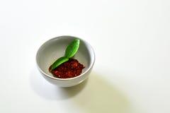 Goma roja del curry, curry asado de los chiles Imágenes de archivo libres de regalías