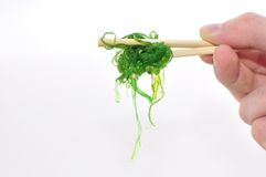 Goma Wakame Stock Photo
