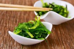 Goma wakame or seaweed salad Royalty Free Stock Image