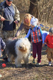 GOMEL, BELARUS - 9 April 2017: A great kind dog gets acquainted with people in the nature Stock Photography