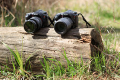 GOMEL, BELARUS - 12 April 2017: Sony cameras are lying on a log. Ready to shoot Royalty Free Stock Image