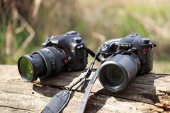 GOMEL, BELARUS - 12 April 2017: Sony cameras are lying on a log. Ready to shoot Royalty Free Stock Images