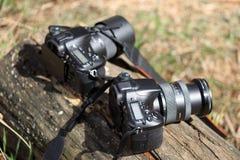 GOMEL, BELARUS - 12 avril 2017 : Les appareils-photo de Sony se trouvent sur un rondin Préparez pour tirer Image libre de droits